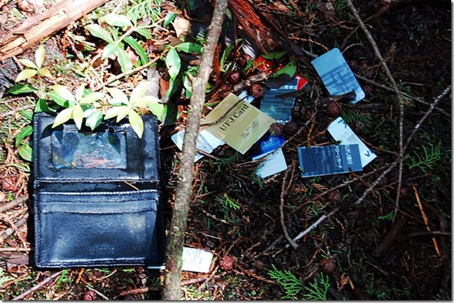 Abandoned bank cards and other belongings